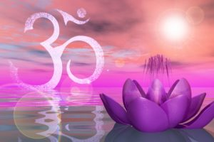 20322949 - holy lotus on the water